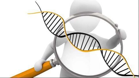Cancer Genetics: Key to Diagnosis, Therapy