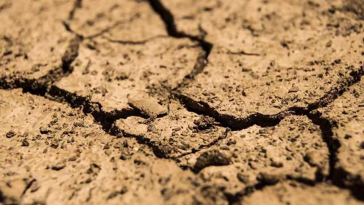 Soil Carbon Release Might Equal U.S. Emissions