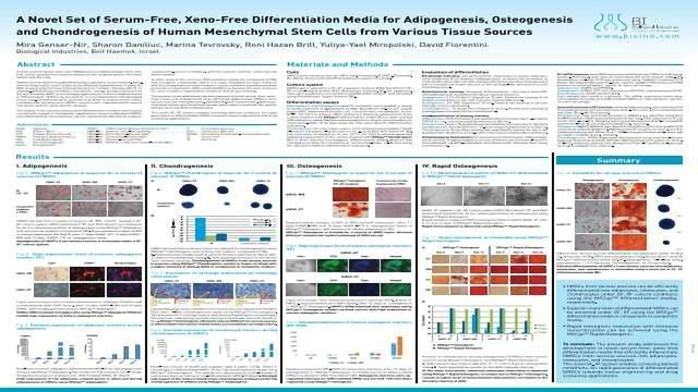 A Novel Set of Serum-Free, Xeno-Free Differentiation Media for Adipogenesis, Osteogenesis and Chondrogenesis of Human Mesenchymal Stem Cells from Various Tissue Sources