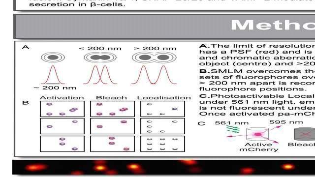 Super-resolution Single Molecule Localization Microscopy of the Exocytotic Machinery Underlying Insulin Secretion