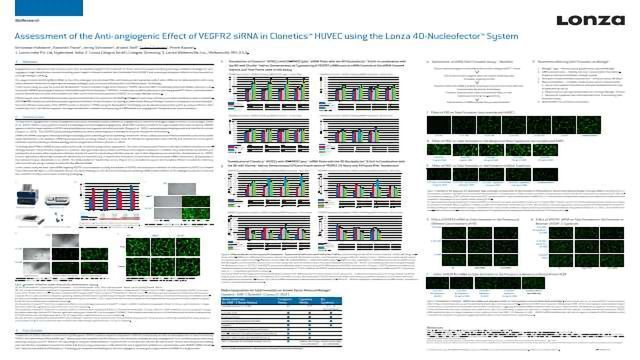 Assessment of the Anti-angiogenic Effect of VEGFR2 siRNA in Clonetics™ HUVEC using the Lonza 4D-Nucleofector™ System