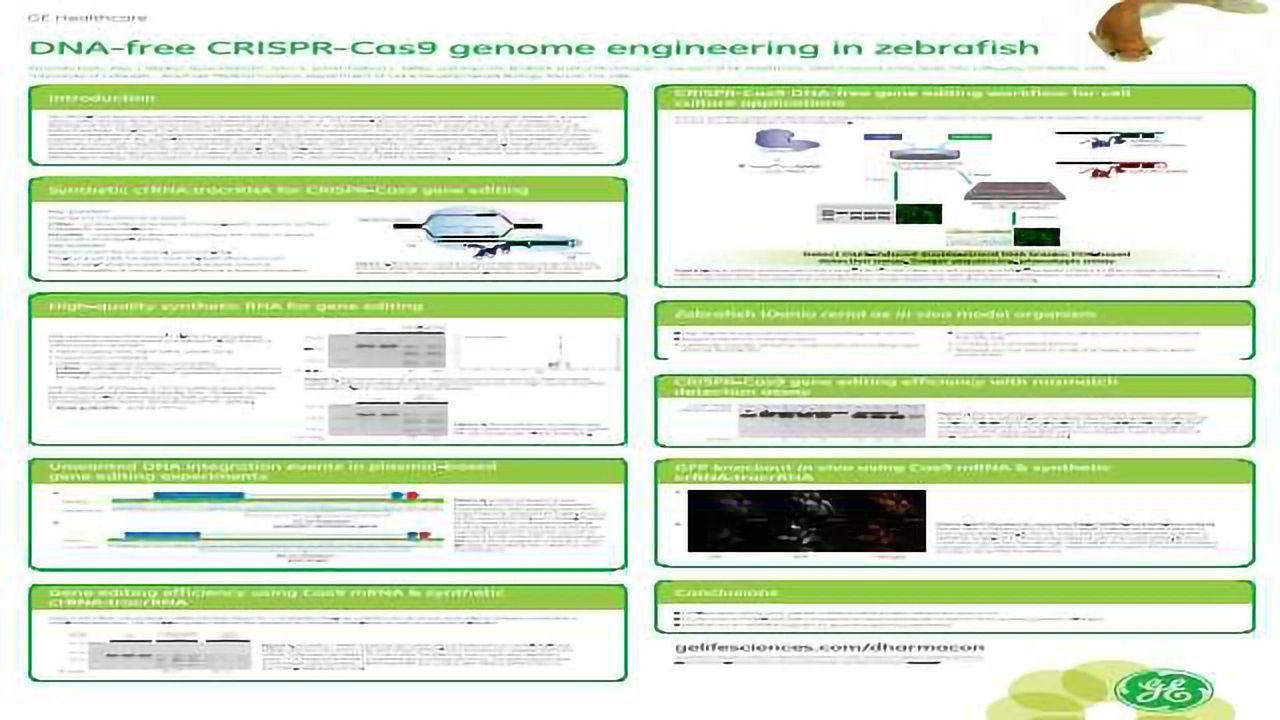 DNA-free CRISPR-Cas9 Genome Engineering in Zebrafish