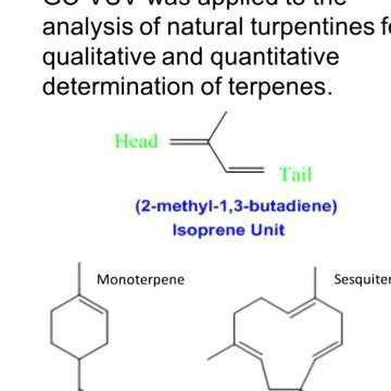 Analysis of Terpenes Using Gas Chromatography with Vacuum