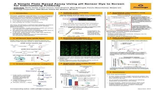 A Simple Plate Based Assay Using pH Sensor Dye to Screen for Internalizing Antibody