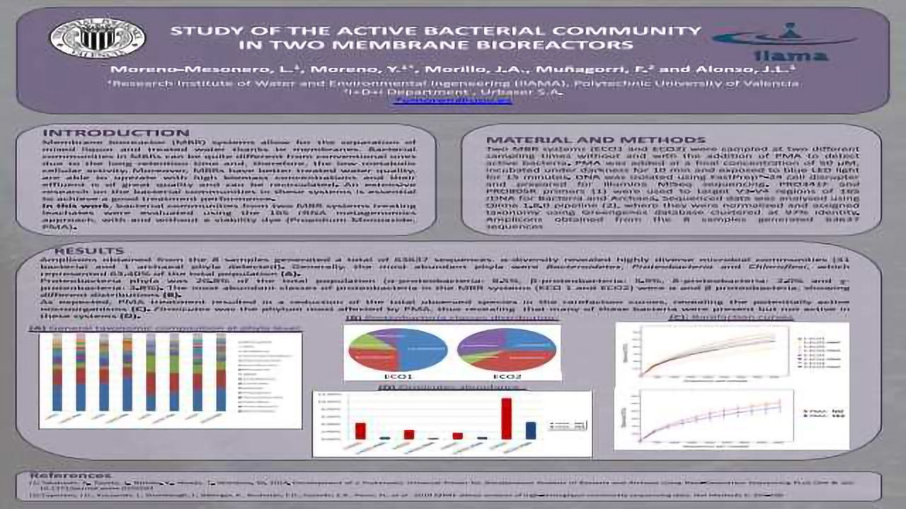 Study Of The Active Bacterial Community In Two Membrane Bioreactors