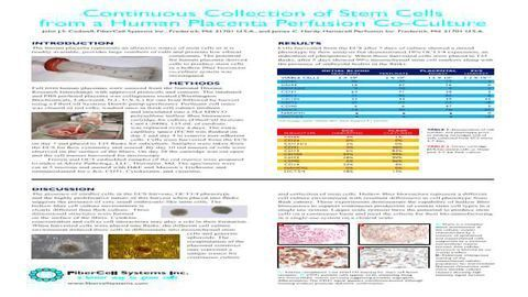 Continuous Collection of Stem Cells from a Human Placenta Perfusion Co-Culture