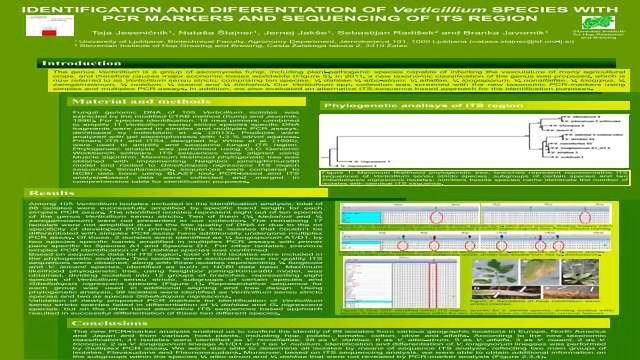 IDENTIFICATION AND DIFERENTIATION OF Verticillium SPECIES WITH PCR MARKERS AND SEQUENCING OF ITS REGION