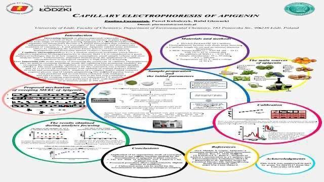 CAPILLARY ELECTROPHORESIS OF APIGENIN
