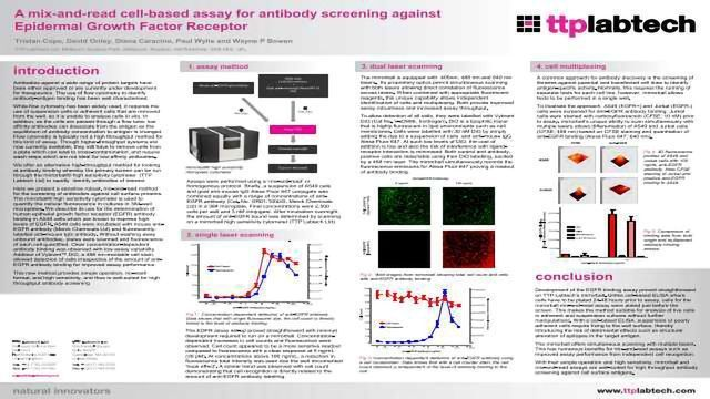 A mix-and-read cell-based assay for antibody screening against Epithelial Growth Factor Receptor