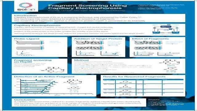 Fragment Screening Using Capillary Electrophoresis