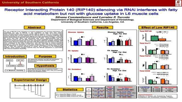 Receptor Interacting Protein 140 (RIP140) silencing via RNAi interferes with fatty acid metabolism but not with glucose uptake in L6 muscle cells