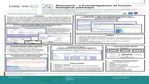 Reactome - a knowledgebase of human biological pathways