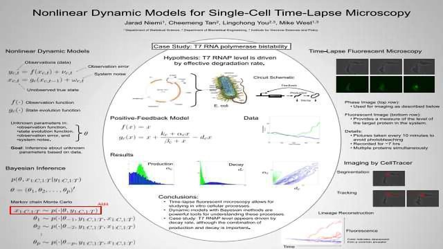 Nonlinear Dynamic Models for Single-Cell Time-Lapse Microscopy