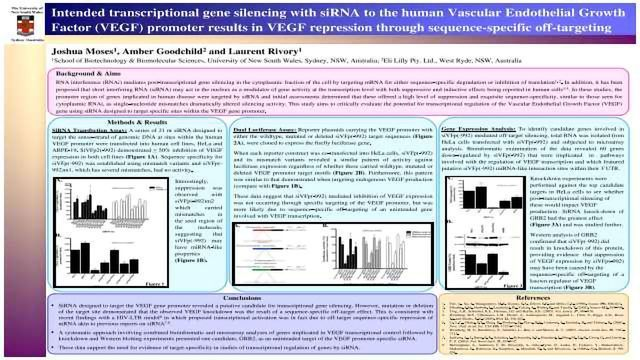 Intended transcriptional gene silencing with siRNA to the human Vascular Endothelial Growth Factor (VEGF) promoter results in VEGF repression through sequence-specific off-targeting
