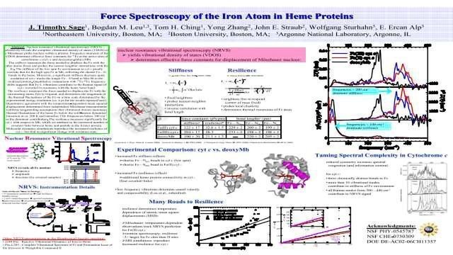 Force Spectroscopy of the Iron Atom in Heme Proteins