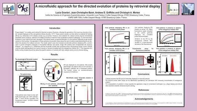 A microfluidic approach for the directed evolution of proteins by retroviral display