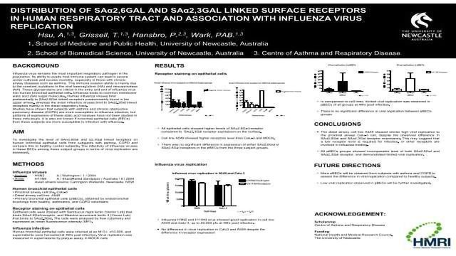 DISTRIBUTION OF SAa2,6GAL AND SAa2,3GAL LINKED SURFACE RECEPTORS IN HUMAN RESPIRATORY TRACT AND ASSOCIATION WITH INFLUENZA VIRUS REPLICATION