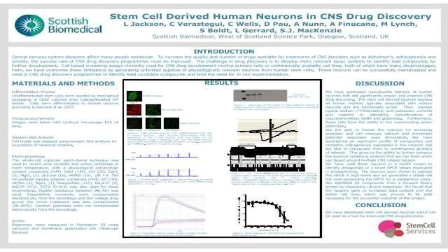 Stem Cell Derived Human Neurons in CNS Drug Discovery
