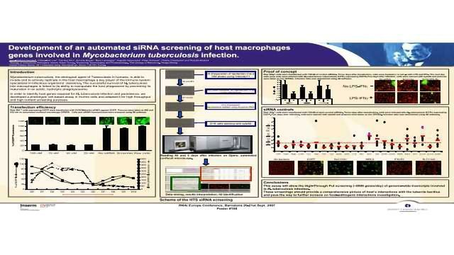 Development of an Automated siRNA Screening of Host Macrophages Genes Involved in Mycobacterium Tuberculosis Infection