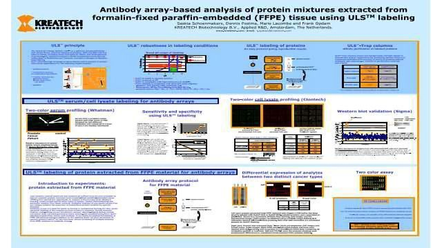 Antibody Array-Based Analysis of Expression Levels in Protein Mixtures Extracted from Formalin-fFxed Paraffin-Embedded (FFPE) Material using ULS Labeling