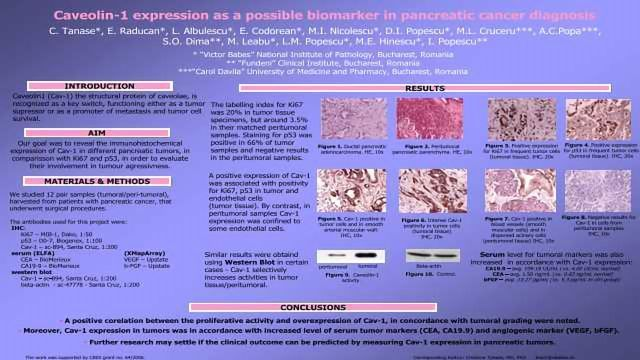 Caveolin-1 Expression as a Possible Biomarker in Pancreatic Cancer Diagnosis