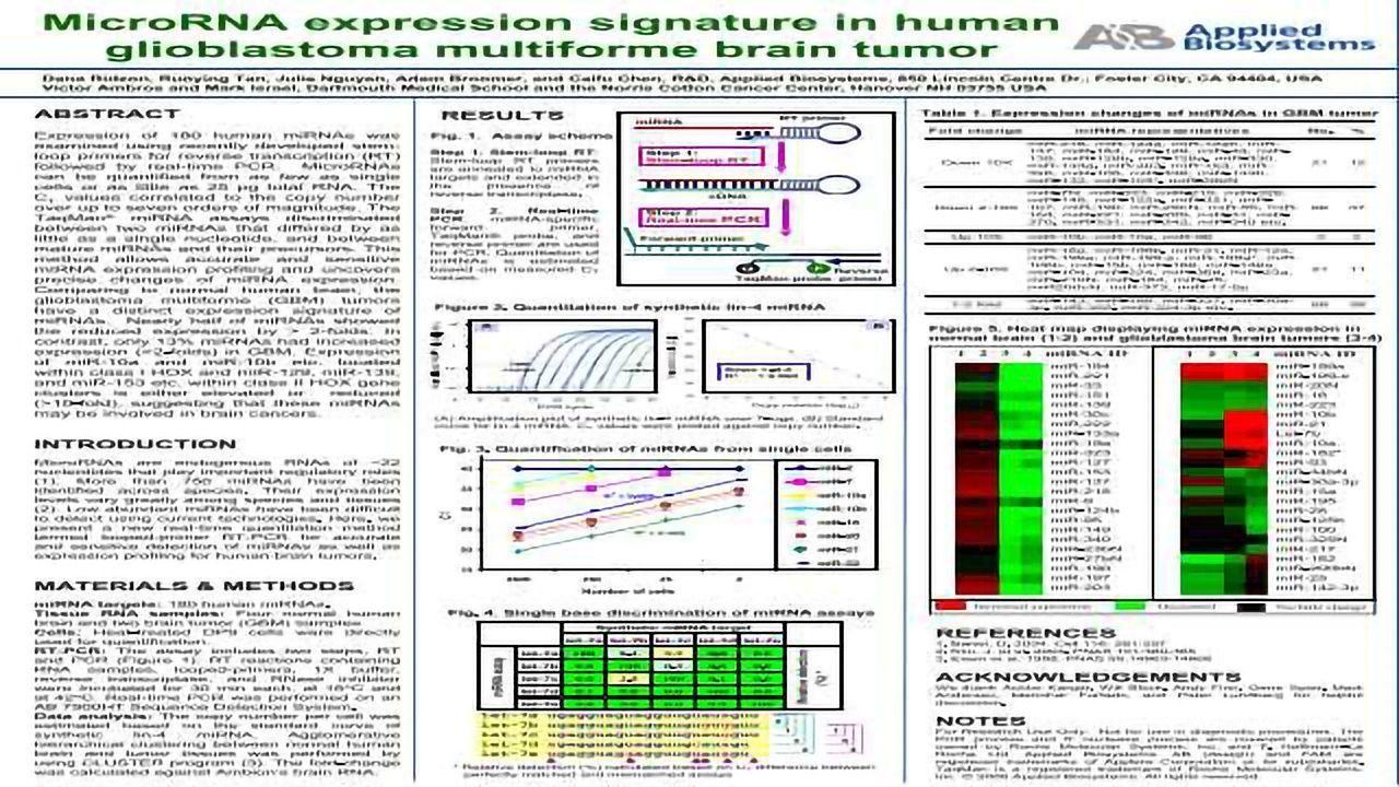 MicroRNA Expression Signature in Human Glioblastoma Multiforme Brain Tumor