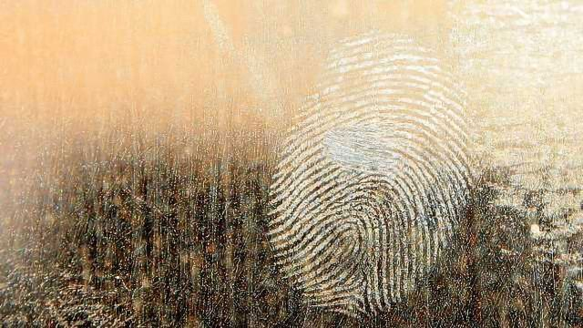 New Markers for Forensic Body-fluid Identification