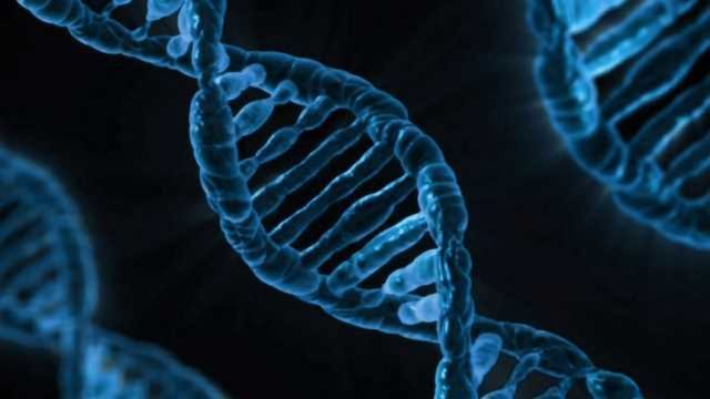 Developing a Next-Generation Forensic DNA Analysis Platform