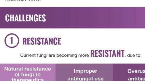 The Fight Against Fungal Infections