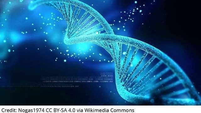 CRISPR – The New Space Race?