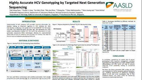 Highly Accurate HCV Genotyping by Targeted Next Generation Sequencing