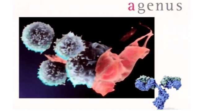 Integration of High Throughput 'Omic Platforms into Antibody Discovery