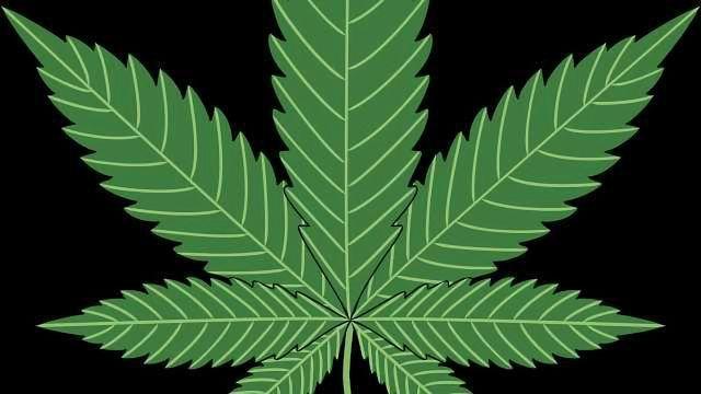 Full Spectrum Laboratories Secures U.S. Cannabinoid Biosynthesis Patent
