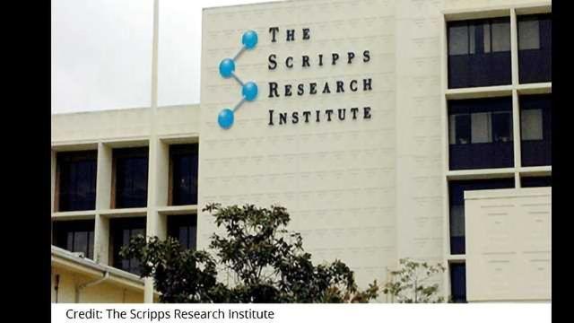 Pfizer, Scripps Partner on DNA-Encoded Library Tech
