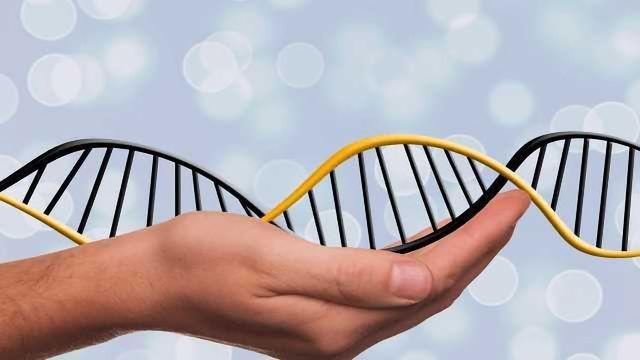 Statistical Models to Back Up DNA Evidence