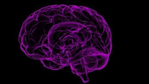 Neurodegeneration Linked To Concussion