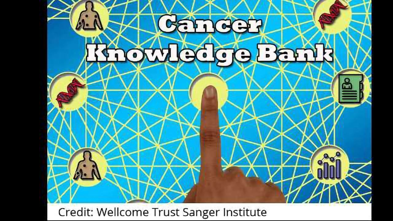 A Knowledge Bank to Inform Personalised Cancer Treatment
