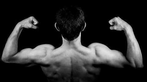 PTEN Plays a Role in Muscle Healing