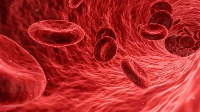 Making Strides in Sickle Cell Disease Research | Technology