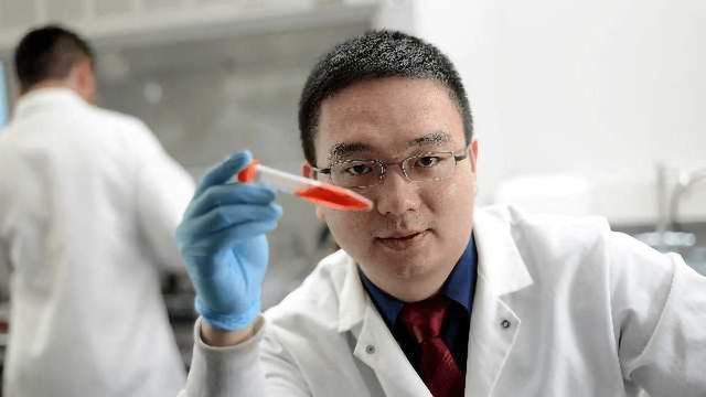 Arming Platelets to Deliver Cancer Immunotherapy