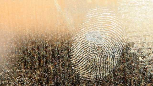 New Guide for Role of DNA in Criminal Investigations