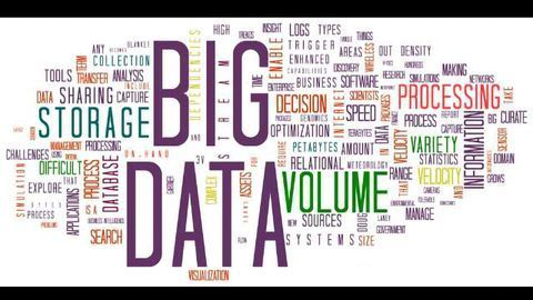 Big Data Helps to Map Immune System Responses
