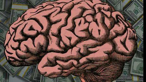 NIH Pilots 8 Year Funding Program For Neuroscience And Neurology