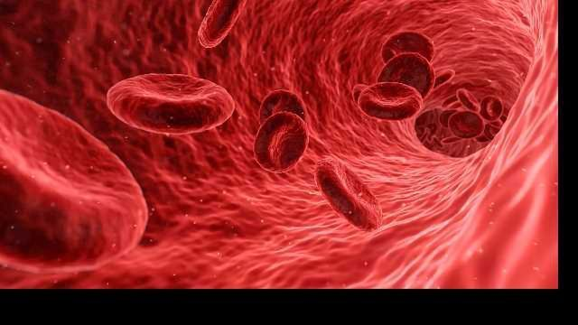 New LC-MS Workflow For Clinical Research From Thermo Fisher