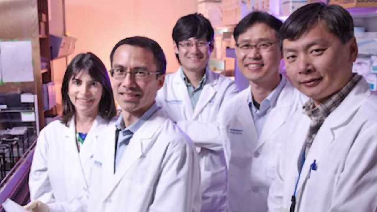 Anticancer Agent Could Also Prevent Heart Failure