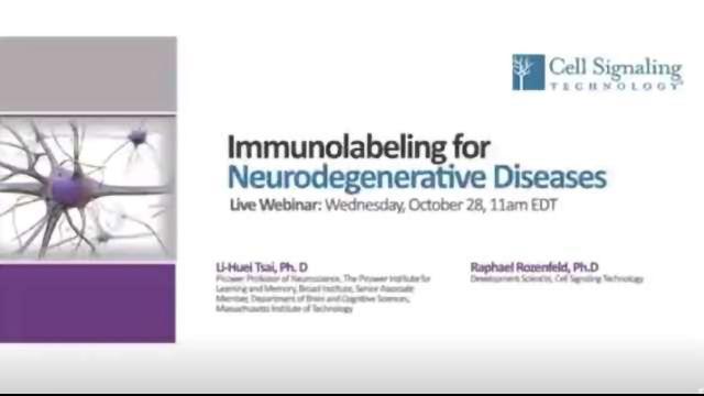 Deciphering the Molecular Pathology of Alzheimer's Disease