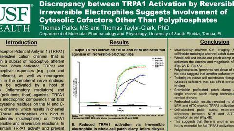 Discrepancy between TRPA1 Activation by Reversible and Irreversible Electrophiles Suggests Involvement of Cytosolic Cofactors Other Than Polyphosphates
