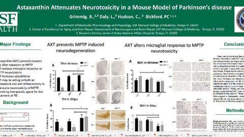 Astaxanthin Attenuates Neurotoxicity in a Mouse Model of Parkinson's disease