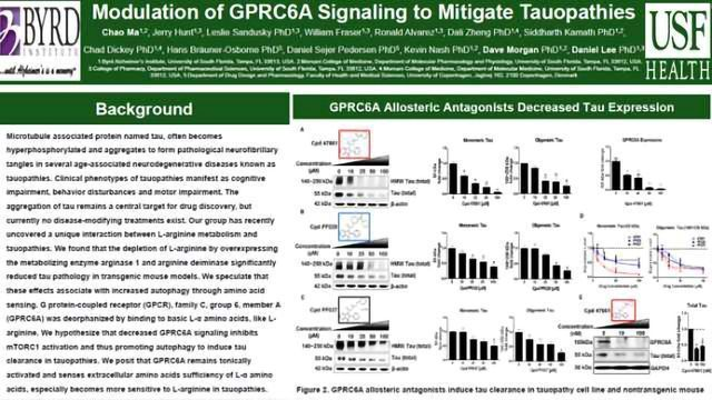 Modulation of GPRC6A Signaling to Mitigate Tauopathies