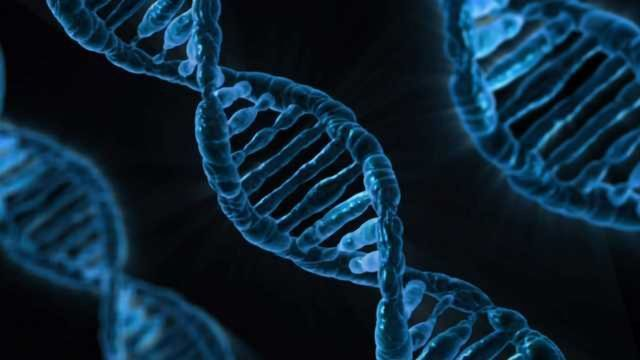 With Stringent Oversight, Heritable Germline Editing Could be Allowed